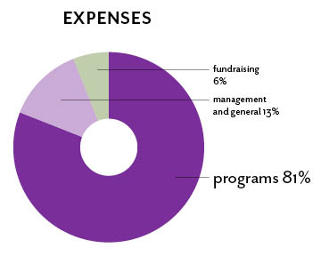 pie chart of expenses, 2012